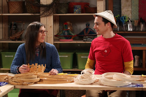 The Big Bang Theory 8.12 ''The l'espace Probe Disintegration''