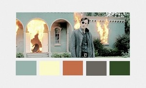 The Governor | Color Scheme