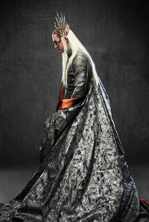 Thranduil's Gown
