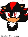 Wait wha - shadow-the-hedgehog fan art