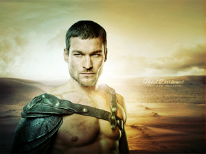 andy whitfield(1971-2011)