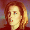 The X-Files fotografia containing a portrait titled dana scully
