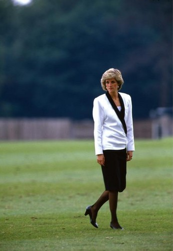 Princess Diana wolpeyper possibly with a wicket called princess diana