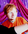 Ed Sheeran - ed-sheeran photo