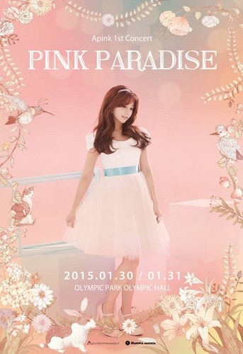 Korea Girls Group A Pink wallpaper possibly containing a gown, a dinner dress, and a cocktail dress called Apink 1st Concert Pink Paradise