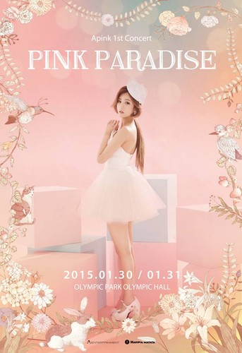 Korea Girls Group A Pink wallpaper containing a portrait called Apink 1st Concert Pink Paradise