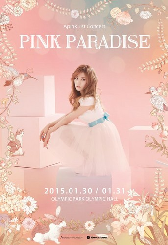 Korea Girls Group A Pink wallpaper containing a gown, a bridesmaid, and a dinner dress titled Apink 1st Concert Pink Paradise