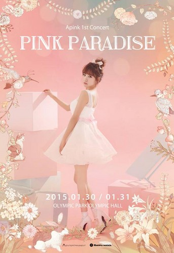 Korea Girls Group A Pink wallpaper probably containing a dinner dress, a cocktail dress, and a bouquet titled Apink 1st Concert Pink Paradise