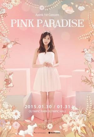 Apink 1st konser berwarna merah muda, merah muda Paradise