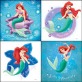 Ariel, The Little Mermaid Collage - disney-princess fan art