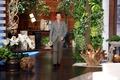 Benedict on the Ellen Degeneres Show - benedict-cumberbatch photo