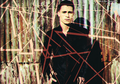 Colton Haynes - colton-haynes fan art