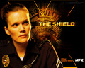 Danny Sofer Wallpaper - the-shield wallpaper