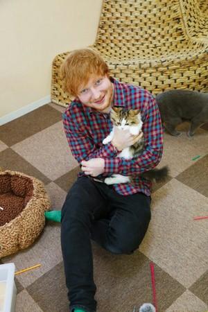 Ed + Kitty = My Fav Pic