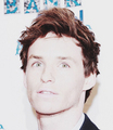 Eddie Redmayne - hottest-actors photo