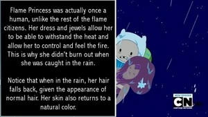 Flame Princess Human Theory (In Foto form :D)