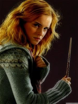 Hermione Granger-Deathly Hallows