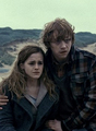 Hermione and Ron - harry-potter photo