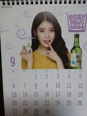 IU's Hite बीयर, बियर & Jinro Soju's 2015 calendar