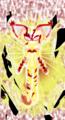 Imperfect Purity {Virus Elder Identity} - sonic-fan-characters photo