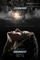 Insurgent Movie Posters  - insurgent photo