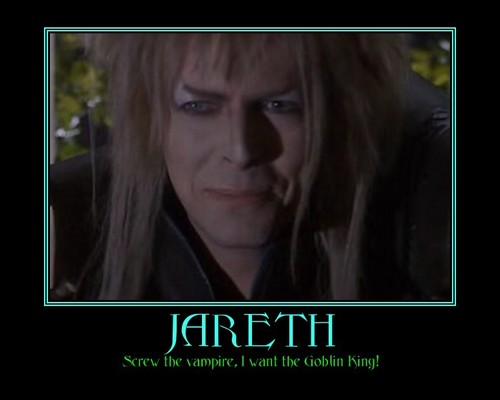 Labyrinth images Jareth meme HD wallpaper and background ... Labyrinth Movie Sarah Dress