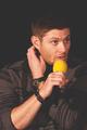 Jensen Ackles  - jensen-ackles photo
