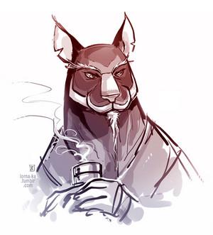 Master Splinter sketch
