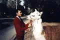 Michael Jackson and llama - michael-jackson photo