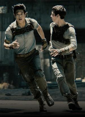 Minho and Thomas