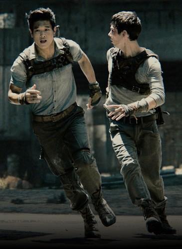 Maze Runner Minho And Thomas