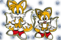 Modern Classic Tails - miles-tails-prower photo