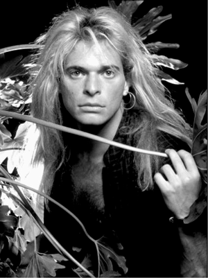 Mr David Lee Roth