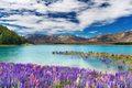New Zealand         - new-zealand photo
