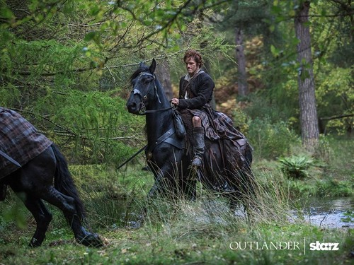 outlander série de televisão 2014 wallpaper with a lippizan titled Outlander Season 1 Promotional Picture