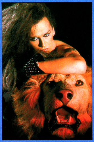 Dead atau Alive band wallpaper possibly containing a sign titled Pete Burns -Taming Your Inner Beast