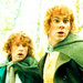 Pippin and Merry - pippin-took icon