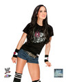 Promotional Photo - AJ Lee