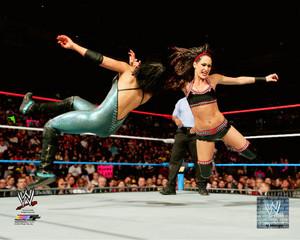 Promotional foto - Brie Bella