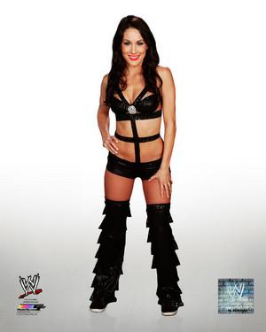 Promotional фото - Brie Bella