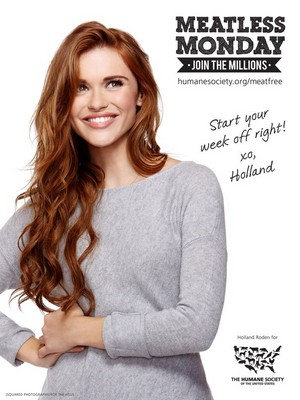 "Promotionnal pic of Holland for ""Meatless Monday"" !"