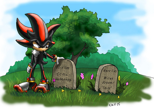 Shadow The Hedgehog wallpaper probably containing a hippeastrum and a bouquet titled RIP Sonic and Tails