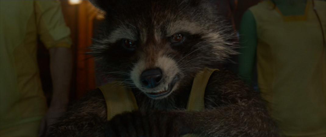 Rocket Raccoon: I told 당신 I had a plan