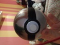 Safari Ball - pokemon photo