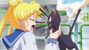 Sailor Moon Crystal Usagi And Luna