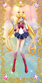 Sailor Moon ☆ - sailor-moon photo