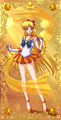 Sailor Venus ☆