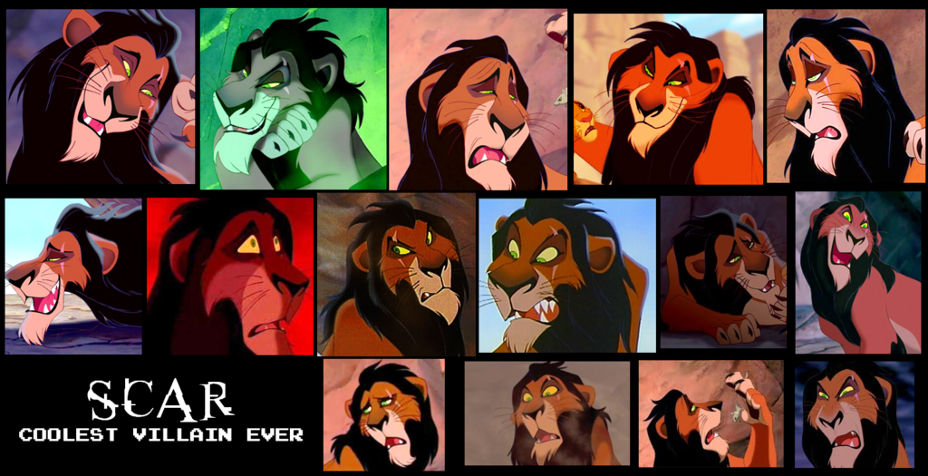 Scar collage
