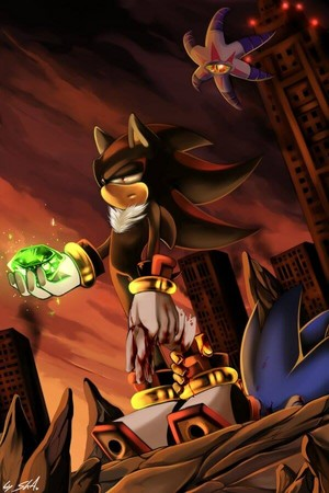 Shadow is the best hedgehog in the world