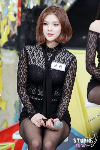 Nine Muses fondo de pantalla possibly with a hip boot called Sojin @ MNet Countdown Begins
